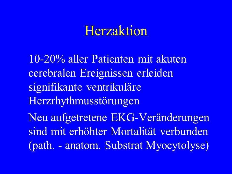 Herzaktion 10-20% aller Patienten mit akuten cerebralen Ereignissen erleiden signifikante ventrikuläre Herzrhythmusstörungen Neu aufgetretene EKG-Verä