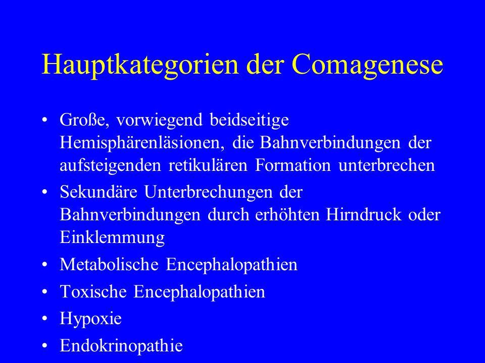 Hauptkategorien der Comagenese Große, vorwiegend beidseitige Hemisphärenläsionen, die Bahnverbindungen der aufsteigenden retikulären Formation unterbr