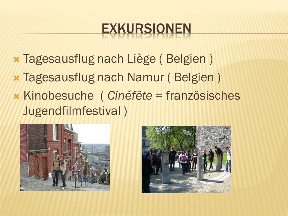 Tagesausflug nach Liège ( Belgien ) Tagesausflug nach Namur ( Belgien ) Kinobesuche ( Cinéfête = französisches Jugendfilmfestival )