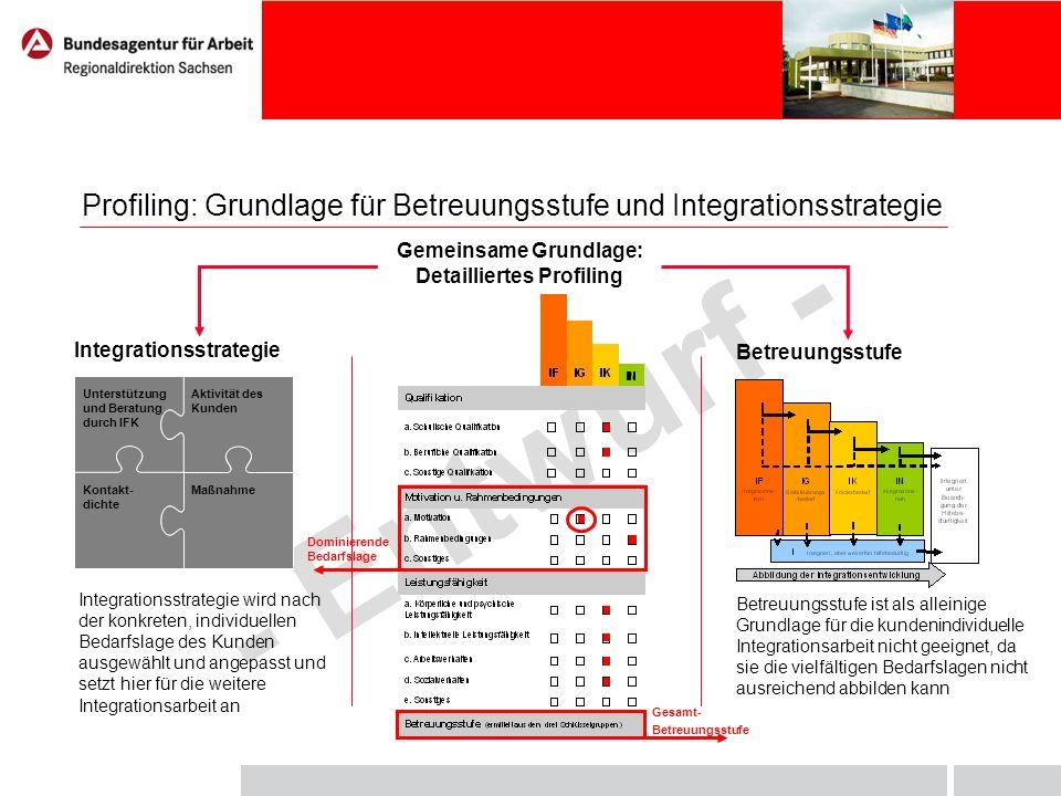 - Entwurf - Profiling: Grundlage für Betreuungsstufe und Integrationsstrategie Gemeinsame Grundlage: Detailliertes Profiling Integrationsstrategie Bet