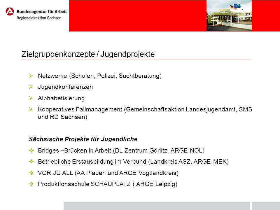 Zielgruppenkonzepte / Jugendprojekte Netzwerke (Schulen, Polizei, Suchtberatung) Jugendkonferenzen Alphabetisierung Kooperatives Fallmanagement (Gemei