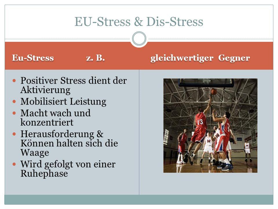 Eu-Stress z.B.