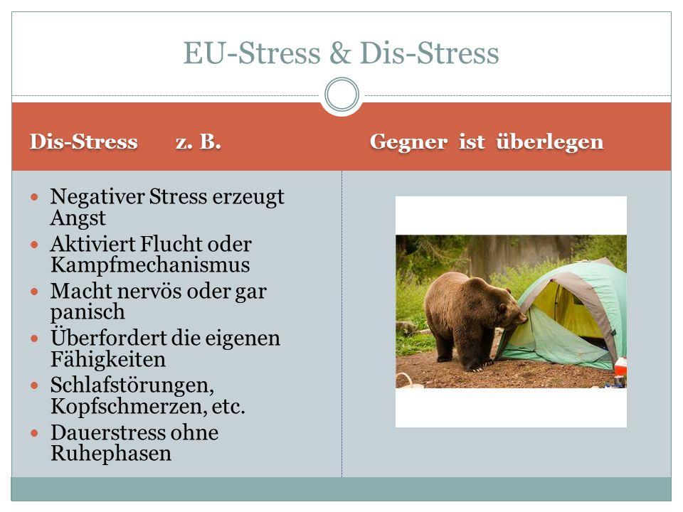 Dis-Stress z.B.