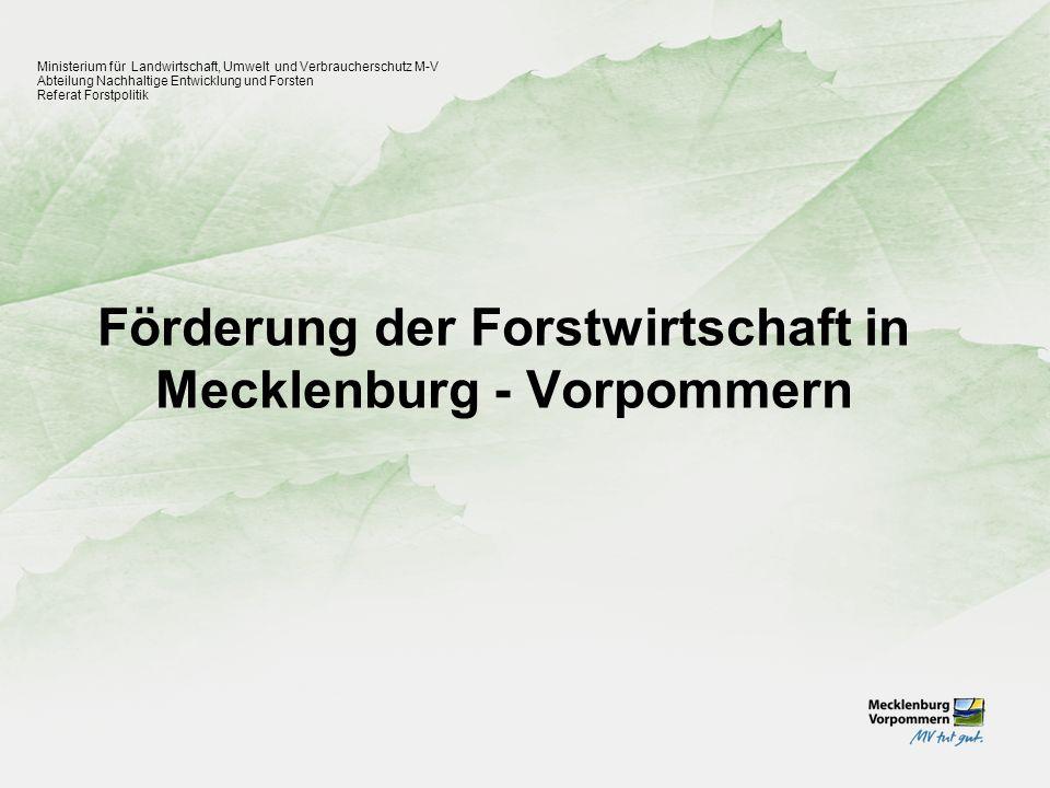 Forstpolitische Ziele des Landes M - V Ministerium für Landwirtschaft, Umwelt und Verbraucherschutz M-V Abteilung Nachhaltige Entwicklung und Forsten Referat Forstpolitik 1.Verbesserung der Infrastruktur zur Schaffung und Sicherung von Arbeitsplätzen in der Forst- und Holzwirtschaft sowie im Tourismus 2.Umsetzung des Waldmehrungsprogramms des Landes M – V