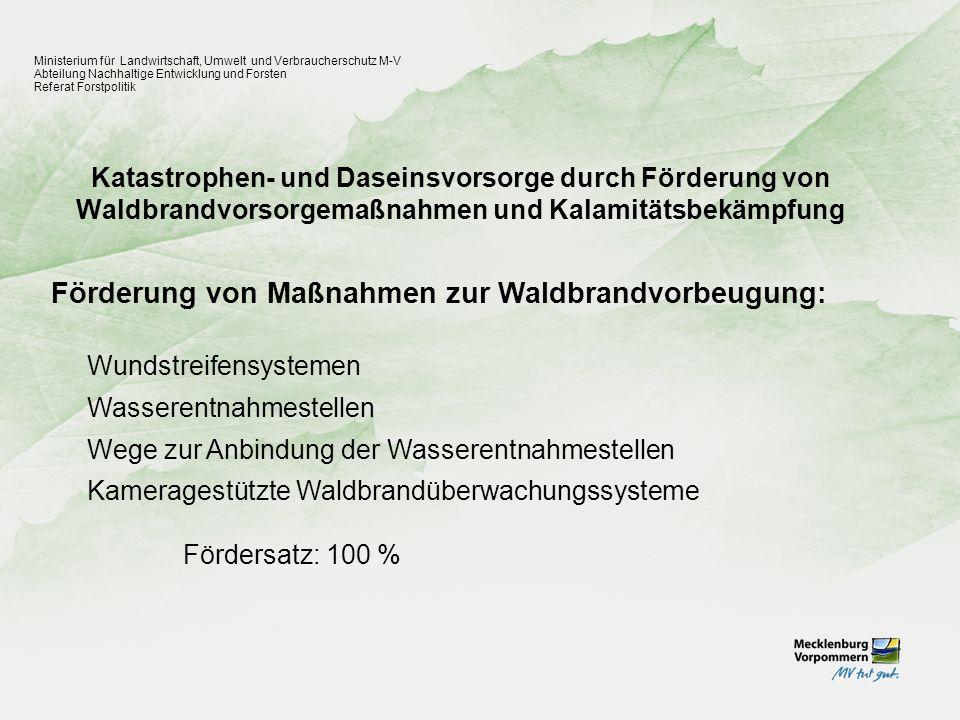 Katastrophen- und Daseinsvorsorge durch Förderung von Waldbrandvorsorgemaßnahmen und Kalamitätsbekämpfung Ministerium für Landwirtschaft, Umwelt und V