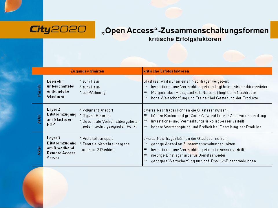 Open Access-Zusammenschaltungsformen kritische Erfolgsfaktoren