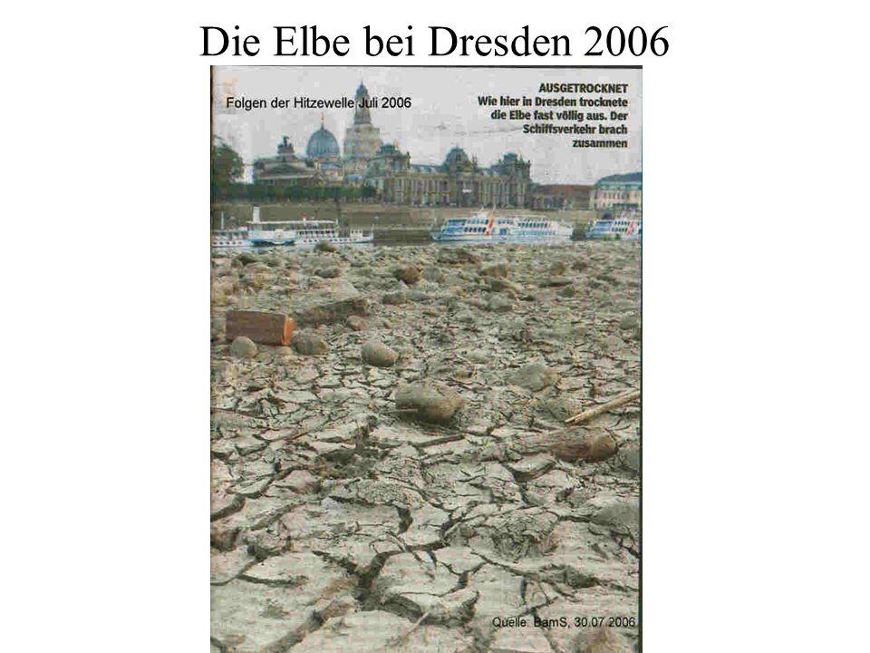 Die Elbe bei Dresden 2006