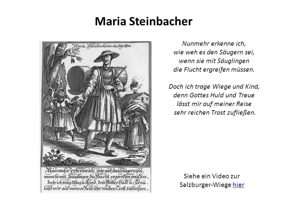 Maria Steinbacher Nunmehr erkenne ich, wie weh es den Säugern sei, wenn sie mit Säuglingen die Flucht ergreifen müssen.