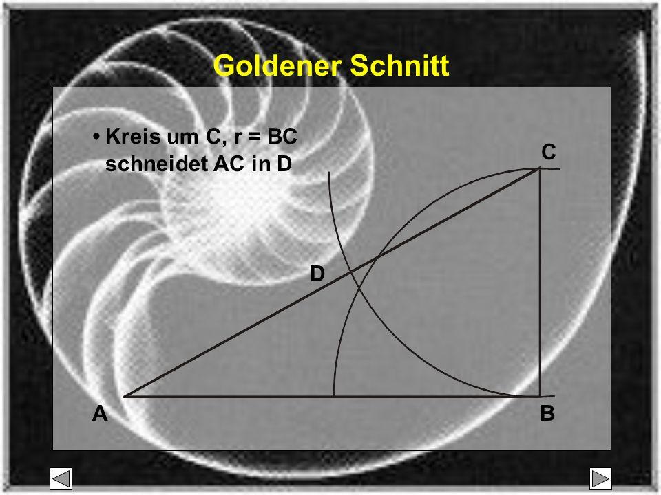 A C B D Kreis um C, r = BC schneidet AC in D Goldener Schnitt