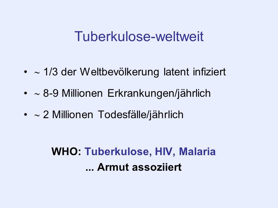 Tuberkulose-weltweit 1/3 der Weltbevölkerung latent infiziert 8-9 Millionen Erkrankungen/jährlich 2 Millionen Todesfälle/jährlich WHO: Tuberkulose, HI
