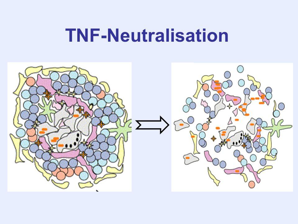 TNF-Neutralisation