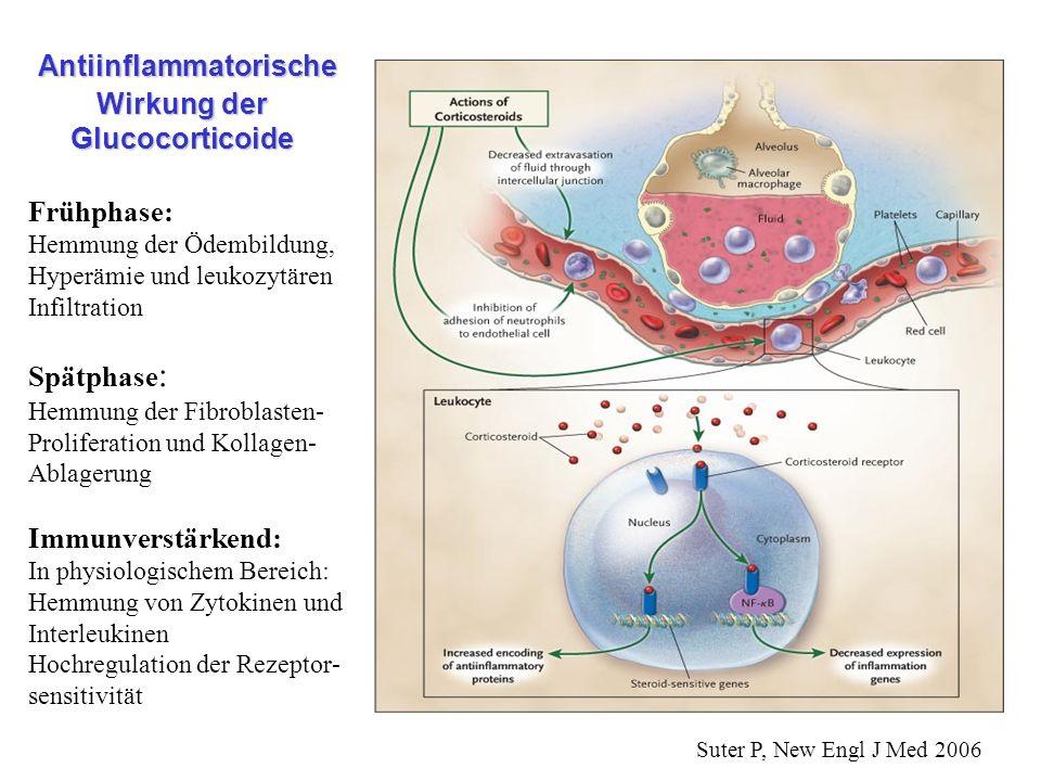 Antiinflammatorische Wirkung der Glucocorticoide Antiinflammatorische Wirkung der Glucocorticoide Frühphase: Hemmung der Ödembildung, Hyperämie und le
