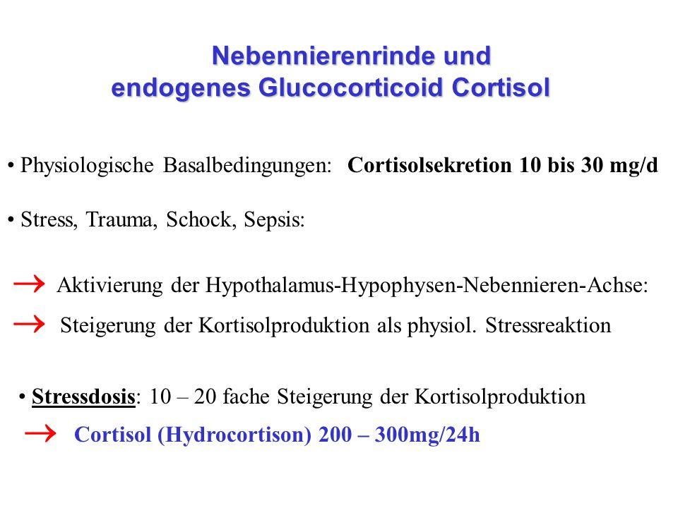 Nebennierenrinde und endogenes Glucocorticoid Cortisol Nebennierenrinde und endogenes Glucocorticoid Cortisol Physiologische Basalbedingungen: Cortiso