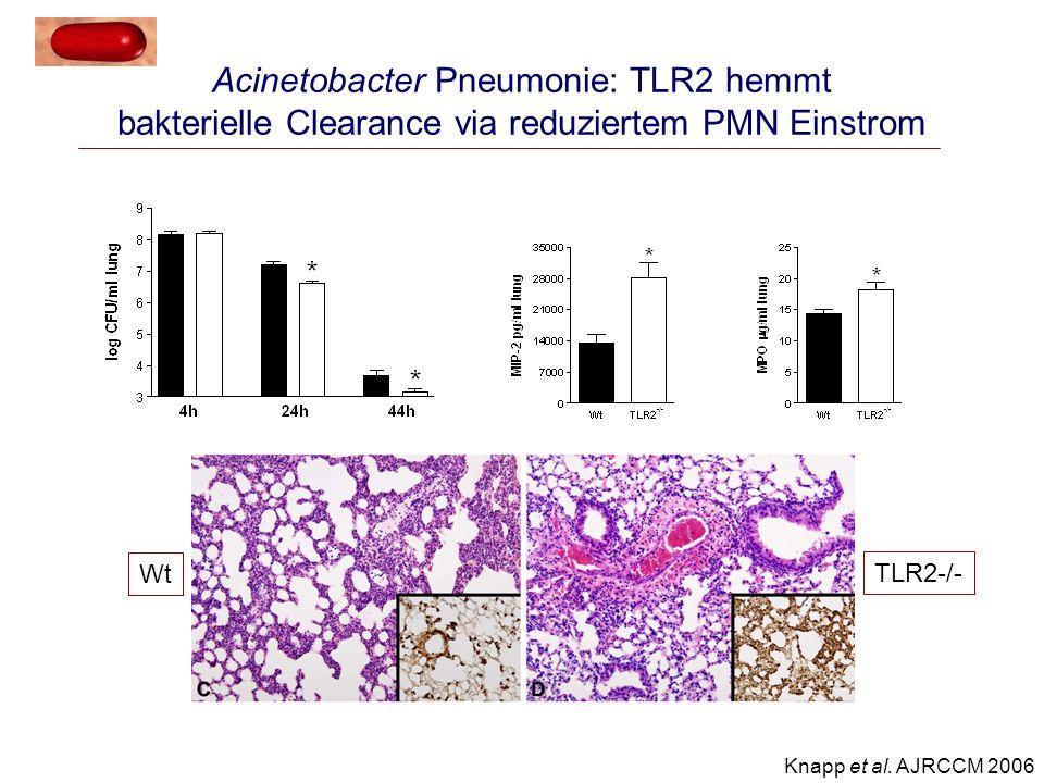 Lokalisierte Infektion Lokale Entzündung unterstützt host defense Fulminante Sepsis Systemische Entzündung erhöht die Mortalität Kompensatorische Mechanismen Anti-TLR2 Kein Einfluss auf bakterielle Clearance Reduktion der systemischen Toxizität Entzündungsmodulation via TLR2 Immunparalyse Mangelhafte Entzündung prädisponiert für nosokomiale Infektionen Kein Einfluss