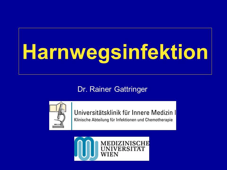 Harnwegsinfektion Dr. Rainer Gattringer