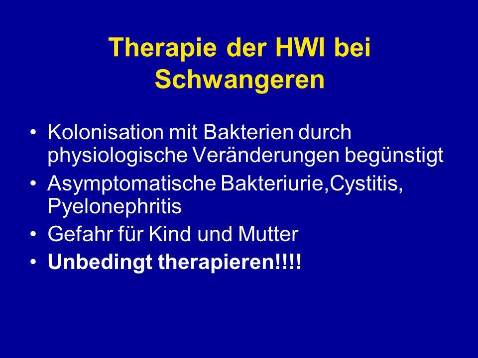 Therapie der HWI bei Schwangeren Kolonisation mit Bakterien durch physiologische Veränderungen begünstigt Asymptomatische Bakteriurie,Cystitis, Pyelon