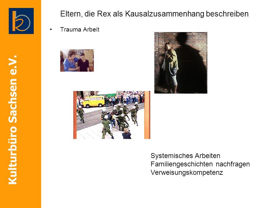 Eltern, die Rex als Kausalzusammenhang beschreiben Trauma Arbeit Systemisches Arbeiten Familiengeschichten nachfragen Verweisungskompetenz