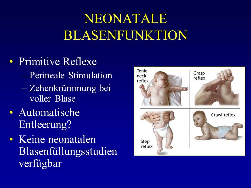 NEONATALE BLASENFUNKTION Primitive Reflexe –Perineale Stimulation –Zehenkrümmung bei voller Blase Automatische Entleerung? Keine neonatalen Blasenfüll