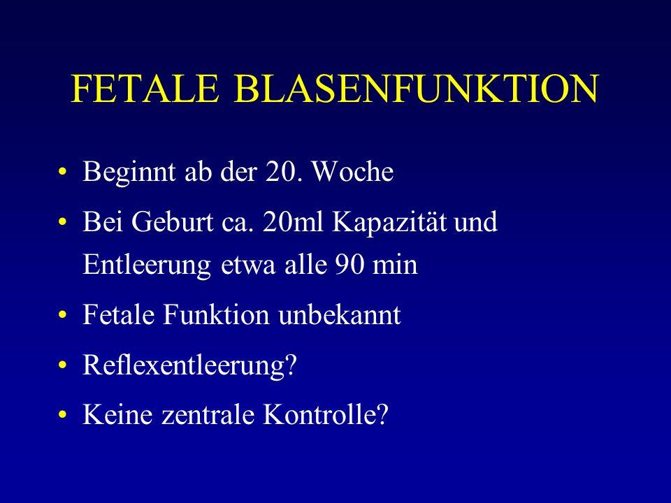 FETALE BLASENFUNKTION Beginnt ab der 20. Woche Bei Geburt ca. 20ml Kapazität und Entleerung etwa alle 90 min Fetale Funktion unbekannt Reflexentleerun