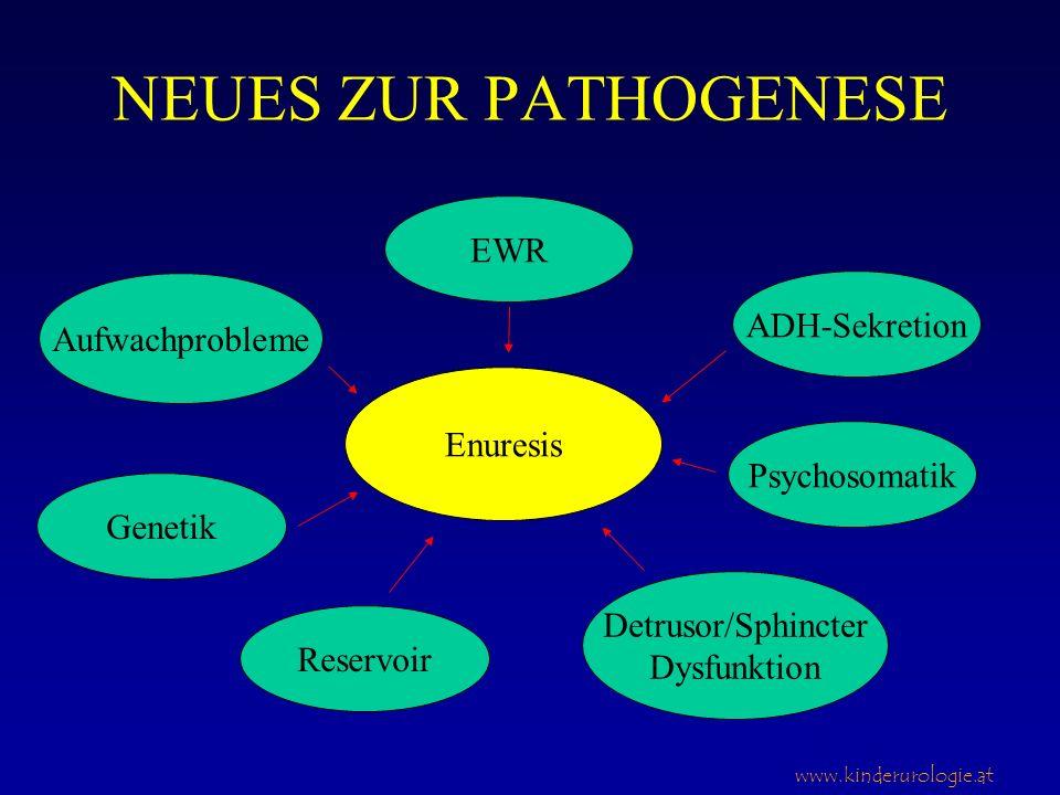 www.kinderurologie.at NEUES ZUR PATHOGENESE Im Endeffekt ein Missverhältnis zwischen nächtlich produziertem Urinvolumen und funktioneller Blasenkapazität kombiniert mit der Unfähigkeit des Kindes aufzuwachen, wenn dies eintritt