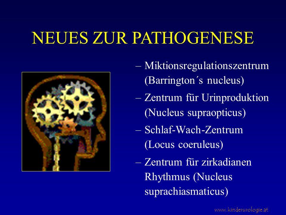 www.kinderurologie.at –Miktionsregulationszentrum (Barrington´s nucleus) –Zentrum für Urinproduktion (Nucleus supraopticus) –Schlaf-Wach-Zentrum (Locu