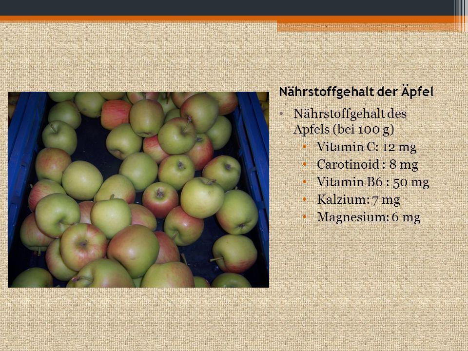 Nährstoffgehalt der Birne Nährstoffgehalt einer Birne (bei 100 g) Vitamin C: 5 mg Beta-Carotin : 16µg Vitamin B6 : 15 µg Kalzium: 9 mg Magnesium: 7 mg