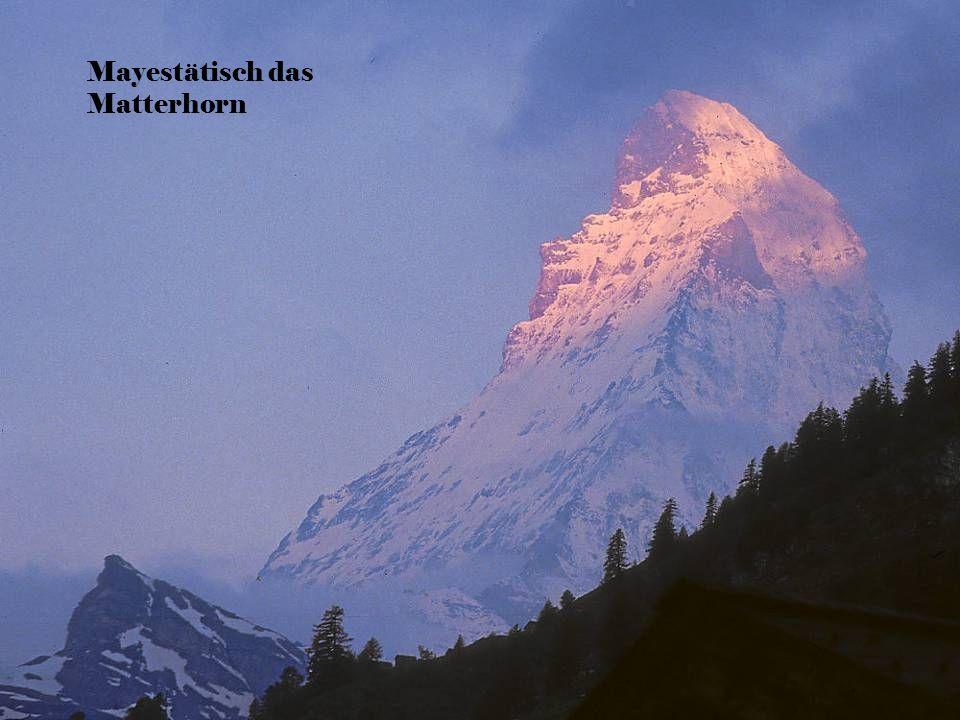 Mayestätisch das Matterhorn