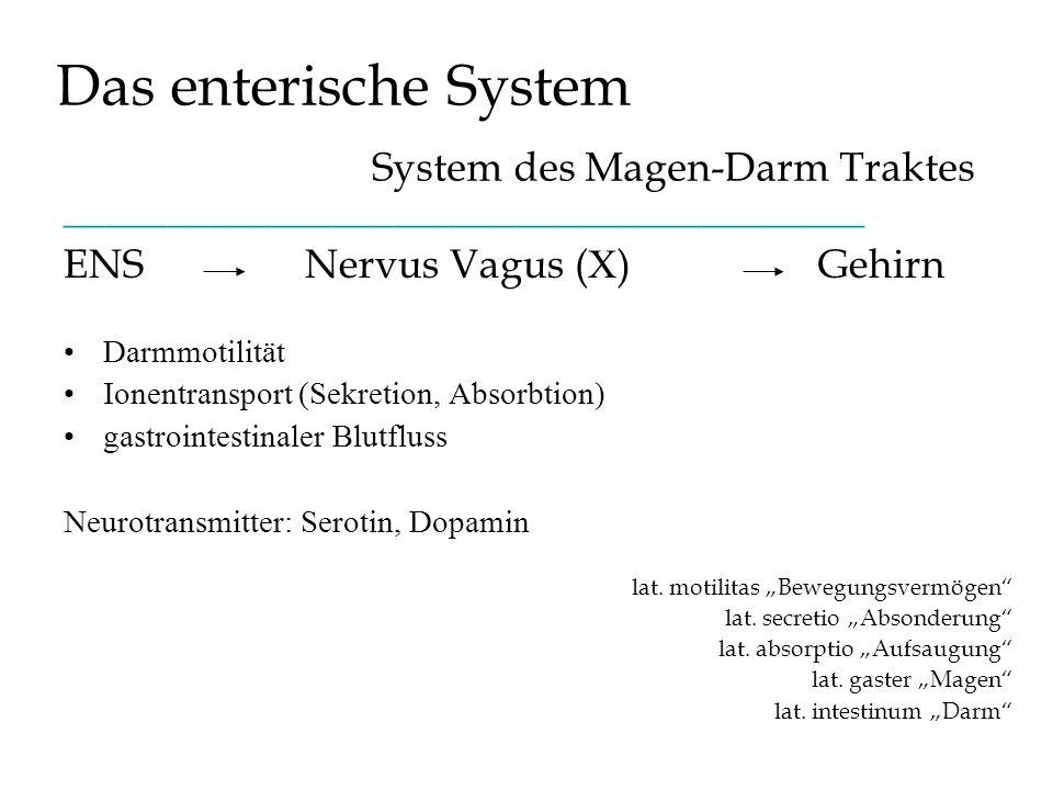 Das enterische System System des Magen-Darm Traktes _______________________________________ ENS Nervus Vagus ( X ) Gehirn Darmmotilität Ionentransport