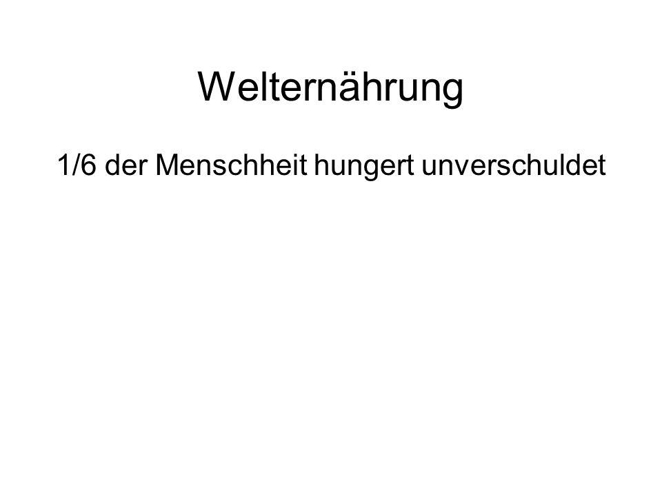 Welternährung 1/6 der Menschheit hungert unverschuldet
