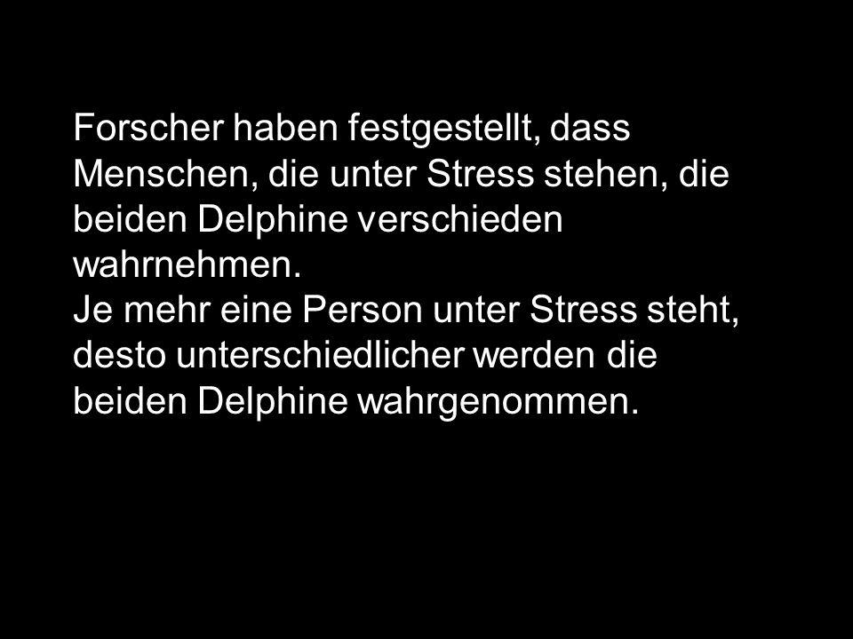 Forscher haben festgestellt, dass Menschen, die unter Stress stehen, die beiden Delphine verschieden wahrnehmen. Je mehr eine Person unter Stress steh