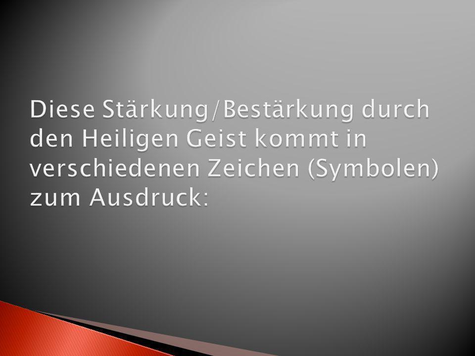 Bischof Dr. Gebhard Fürst Domkapitular Paul Hildebrand