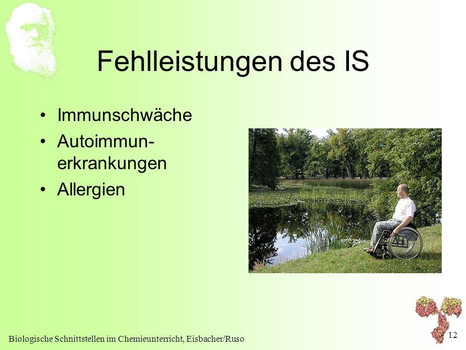 Biologische Schnittstellen im Chemieunterricht, Eisbacher/Ruso 12 Fehlleistungen des IS Immunschwäche Autoimmun- erkrankungen Allergien