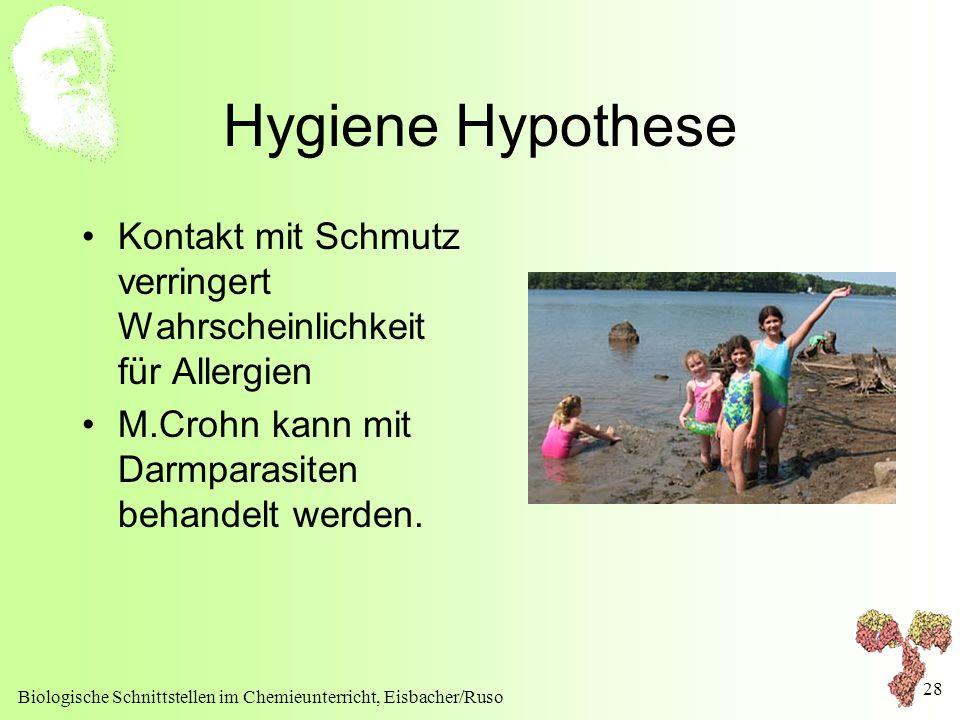Biologische Schnittstellen im Chemieunterricht, Eisbacher/Ruso 28 Hygiene Hypothese Kontakt mit Schmutz verringert Wahrscheinlichkeit für Allergien M.
