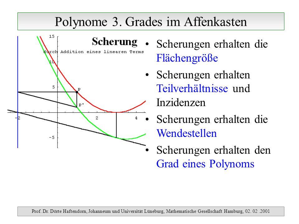 Polynome 3. Grades im Affenkasten Prof. Dr. Dörte Haftendorn, Johanneum und Universität Lüneburg, Mathematische Gesellschaft Hamburg, 02. 02.2001 Sche