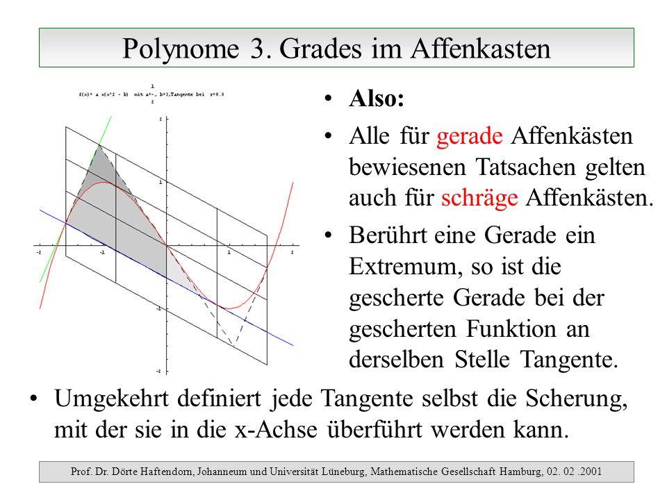 Polynome 3. Grades im Affenkasten Prof. Dr. Dörte Haftendorn, Johanneum und Universität Lüneburg, Mathematische Gesellschaft Hamburg, 02. 02.2001 Also