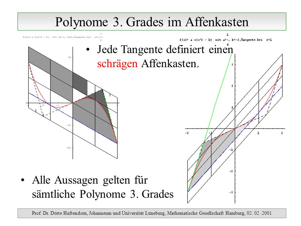 Polynome 3. Grades im Affenkasten Prof. Dr. Dörte Haftendorn, Johanneum und Universität Lüneburg, Mathematische Gesellschaft Hamburg, 02. 02.2001 Alle
