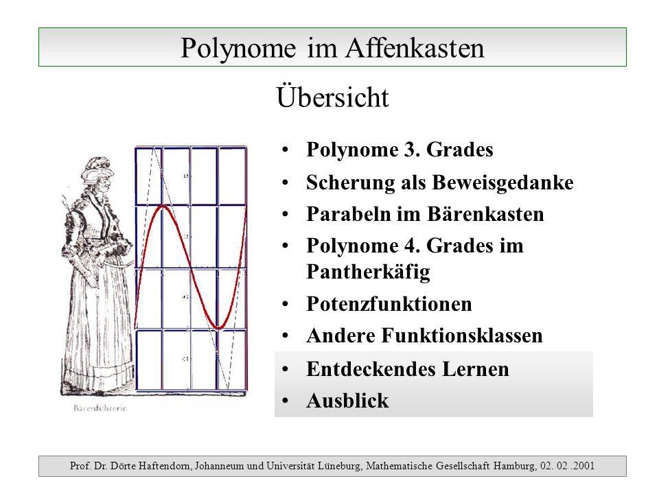Polynome im Affenkasten Prof. Dr. Dörte Haftendorn, Johanneum und Universität Lüneburg, Mathematische Gesellschaft Hamburg, 02. 02.2001 Polynome 3. Gr