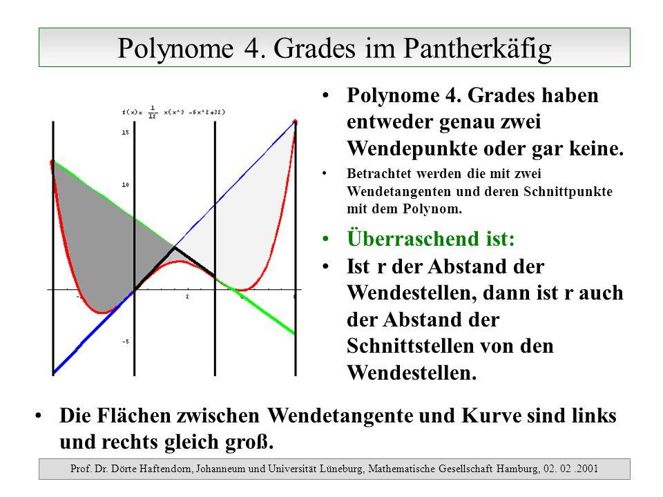 Polynome 4. Grades im Pantherkäfig Prof. Dr. Dörte Haftendorn, Johanneum und Universität Lüneburg, Mathematische Gesellschaft Hamburg, 02. 02.2001 Pol