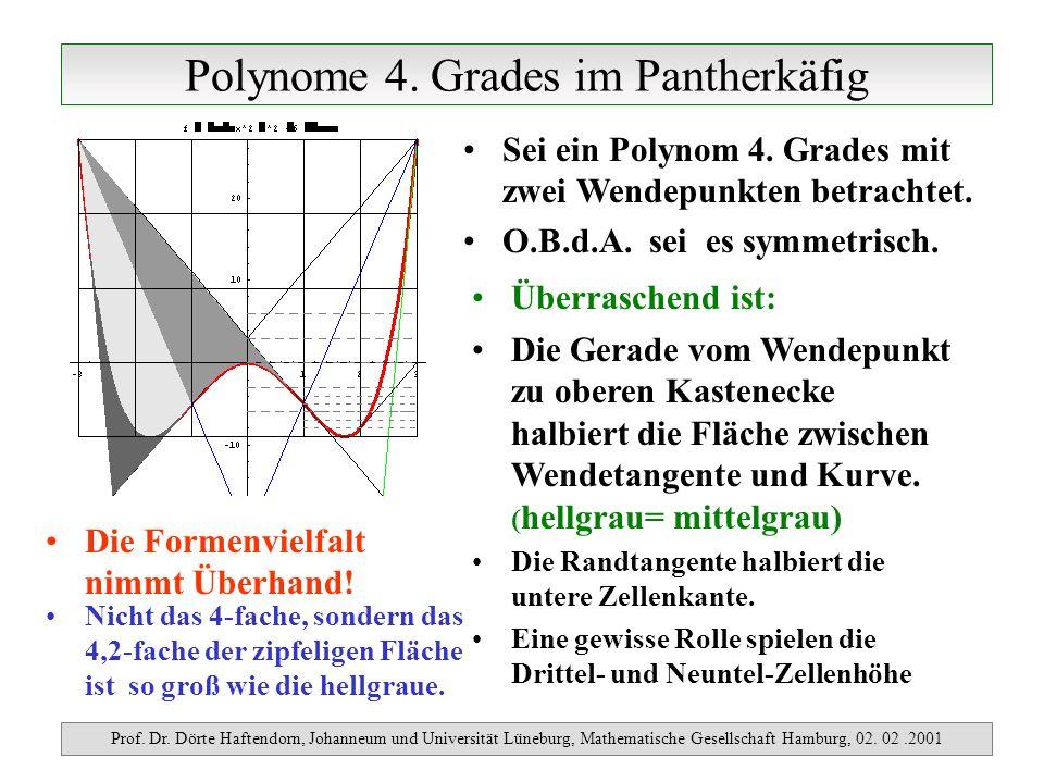 Polynome 4. Grades im Pantherkäfig Prof. Dr. Dörte Haftendorn, Johanneum und Universität Lüneburg, Mathematische Gesellschaft Hamburg, 02. 02.2001 Sei