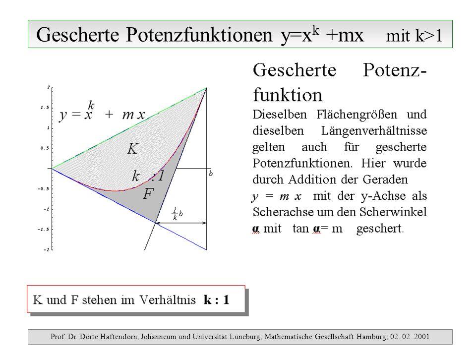 Gescherte Potenzfunktionen y=x k +mx mit k>1 Prof. Dr. Dörte Haftendorn, Johanneum und Universität Lüneburg, Mathematische Gesellschaft Hamburg, 02. 0