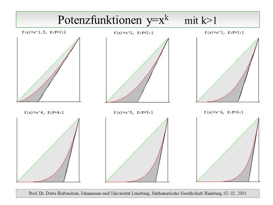 Potenzfunktionen y=x k mit k>1 Prof. Dr. Dörte Haftendorn, Johanneum und Universität Lüneburg, Mathematische Gesellschaft Hamburg, 02. 02.2001