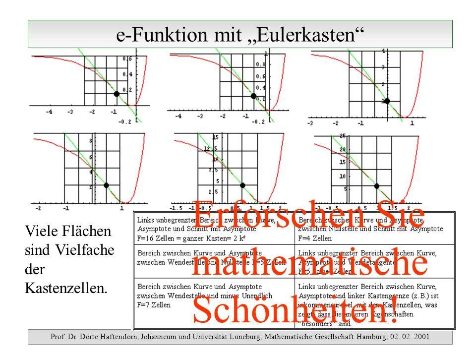 e-Funktion mit Eulerkasten Prof. Dr. Dörte Haftendorn, Johanneum und Universität Lüneburg, Mathematische Gesellschaft Hamburg, 02. 02.2001 Viele Fläch