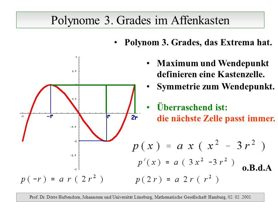 Polynome 3. Grades im Affenkasten Prof. Dr. Dörte Haftendorn, Johanneum und Universität Lüneburg, Mathematische Gesellschaft Hamburg, 02. 02.2001 Poly