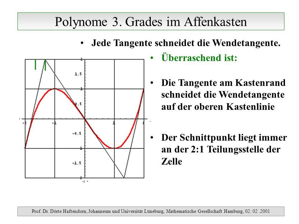 Polynome 3. Grades im Affenkasten Prof. Dr. Dörte Haftendorn, Johanneum und Universität Lüneburg, Mathematische Gesellschaft Hamburg, 02. 02.2001 Jede