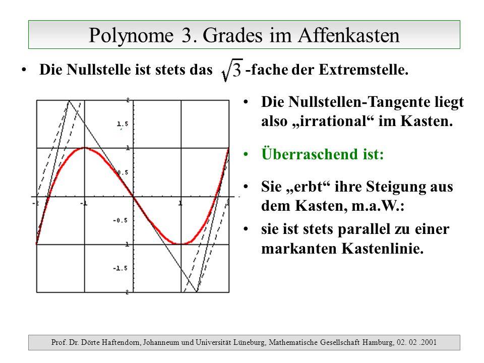 Polynome 3. Grades im Affenkasten Prof. Dr. Dörte Haftendorn, Johanneum und Universität Lüneburg, Mathematische Gesellschaft Hamburg, 02. 02.2001 Die