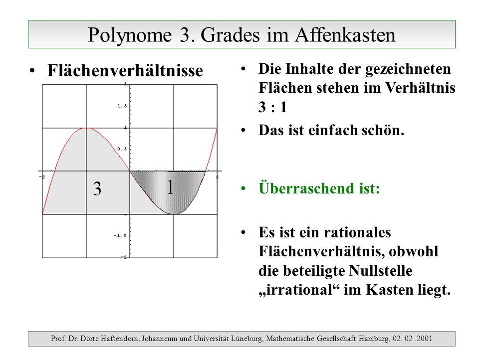 Polynome 3.Grades im Affenkasten Prof. Dr.
