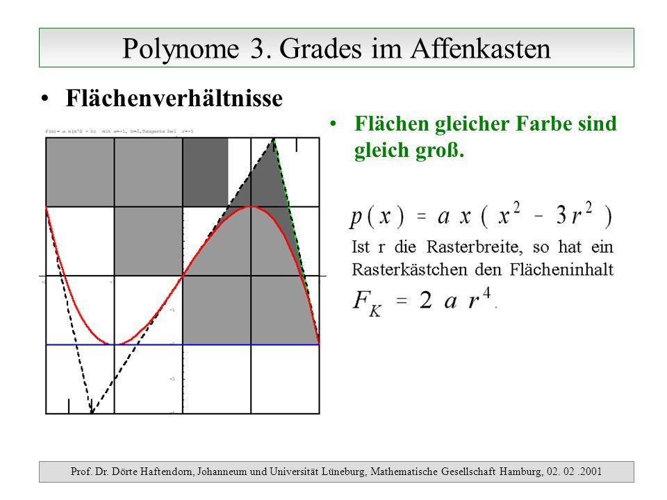 Polynome 3. Grades im Affenkasten Prof. Dr. Dörte Haftendorn, Johanneum und Universität Lüneburg, Mathematische Gesellschaft Hamburg, 02. 02.2001 Fläc
