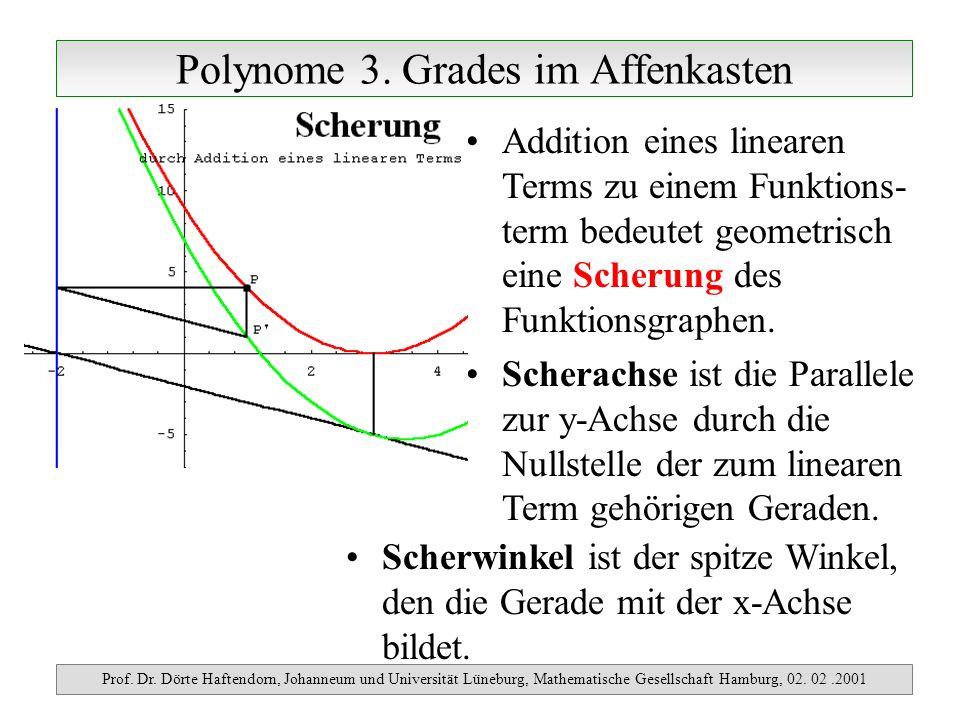 Polynome 3. Grades im Affenkasten Prof. Dr. Dörte Haftendorn, Johanneum und Universität Lüneburg, Mathematische Gesellschaft Hamburg, 02. 02.2001 Addi