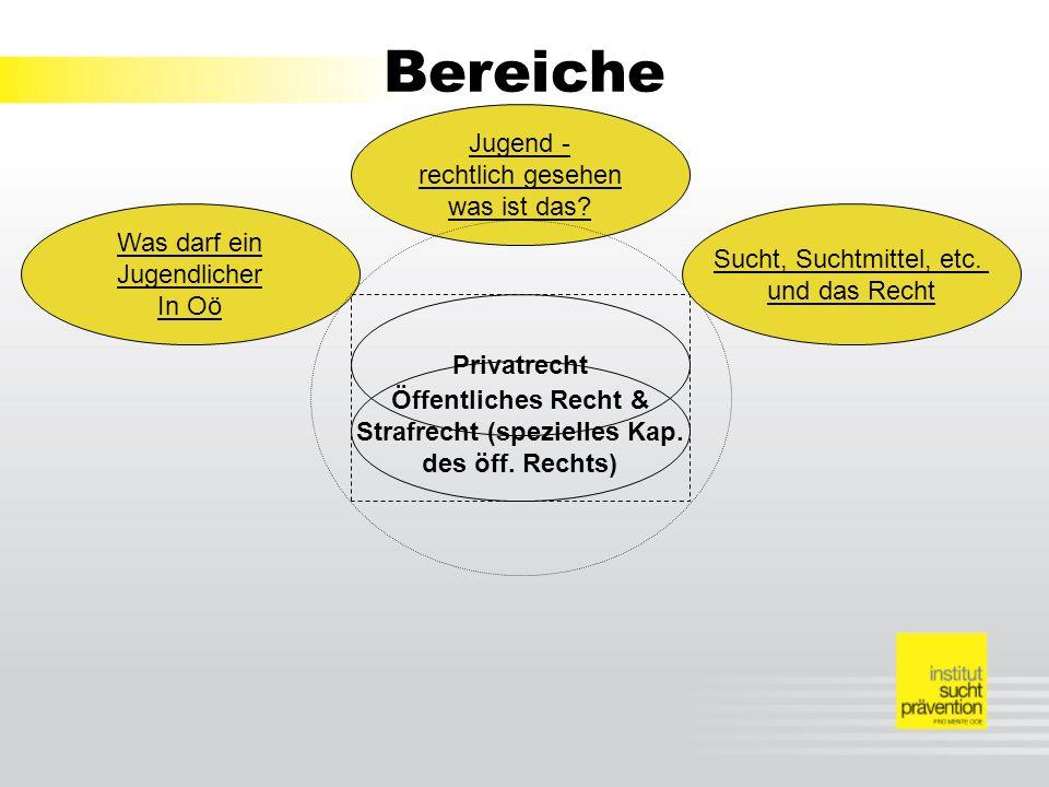 Bereiche Öffentliches Recht & Strafrecht (spezielles Kap.