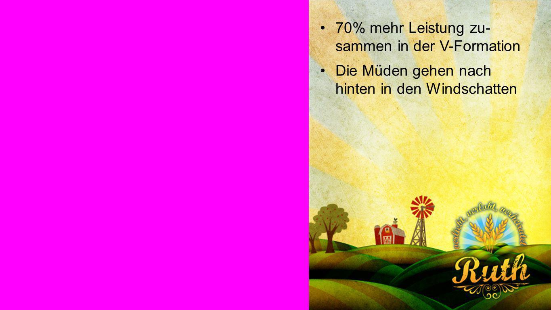 Gänse 2 70% mehr Leistung zu- sammen in der V-Formation Die Müden gehen nach hinten in den Windschatten